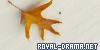 Roya-Drama.Net
